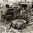 sugarcane press