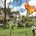 Antigua Ruins