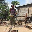 raising chickens at an mcc partner organization