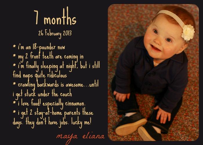 7 Month Photo
